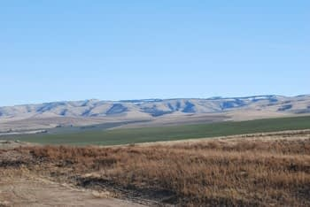 Walla Walla Valley land which is home to Zerba Wine Callers vineyards